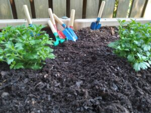 Trowels in planter with flowers
